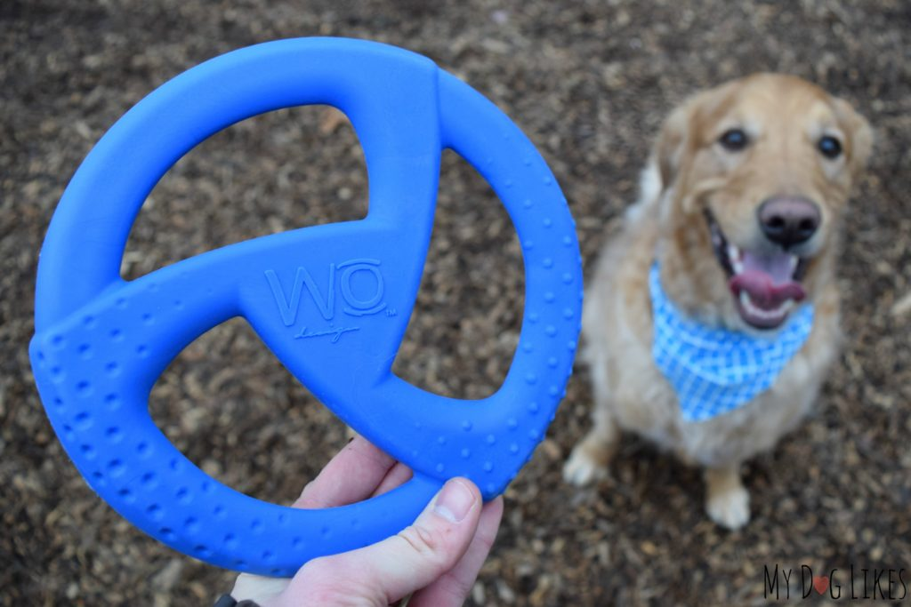 WO Design Disc Review