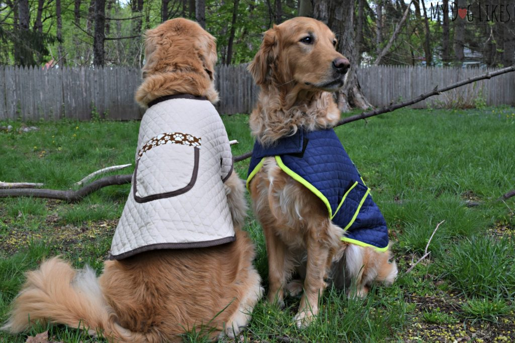 Thanks to a large pocket on the back of the jacket, you will never forget poop bags again!