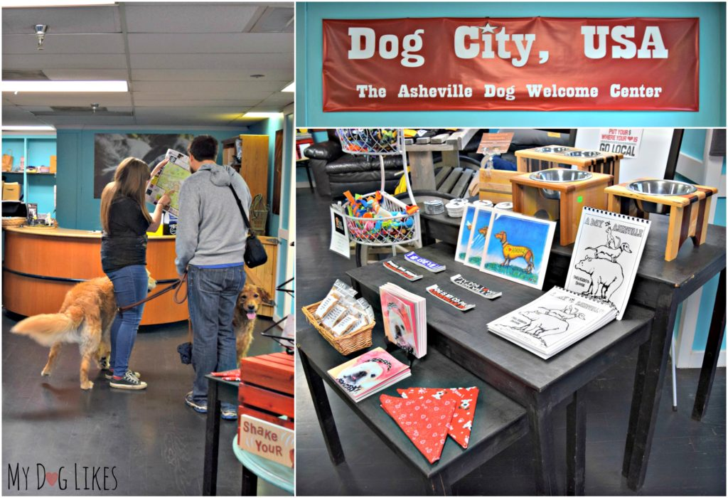 Stopping in at The Dog Door which serves as the official Dog Welcome Center for Asheville!