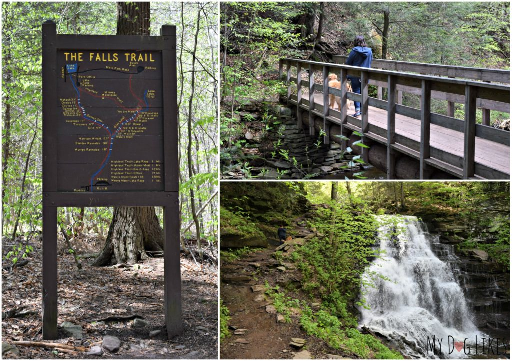 Getting started on the Falls Trail at Rickett's Glen