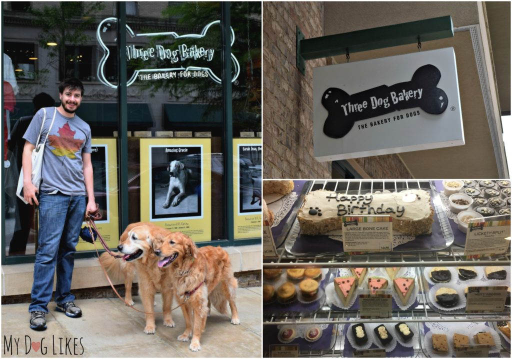 Stopping in to get the dogs a snack at Three Dog Bakery in Asheville