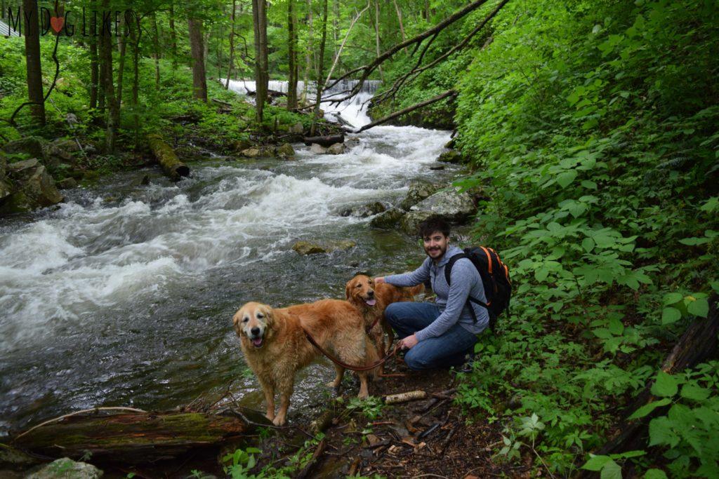Hiking near Blacksburg VA (Mills Creek Nature Park)