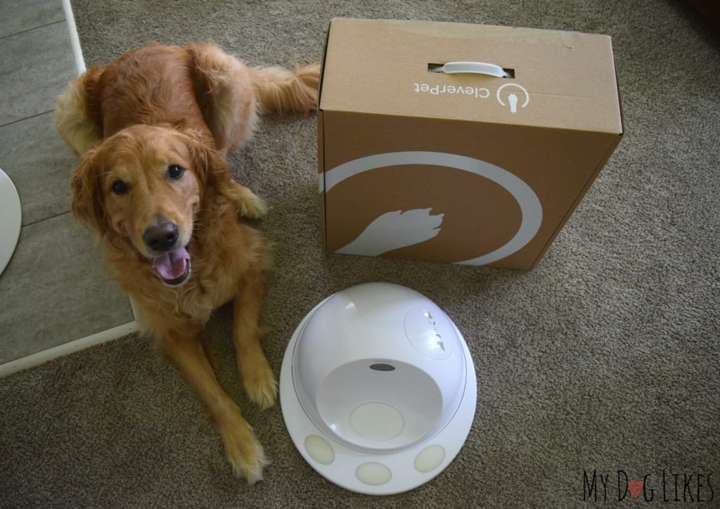 Opening up the CleverPet packaging