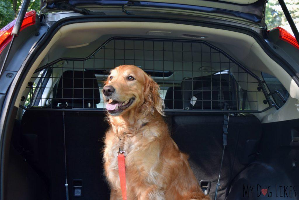 Reviewing a Honda CRV Pet Barrier from Travall