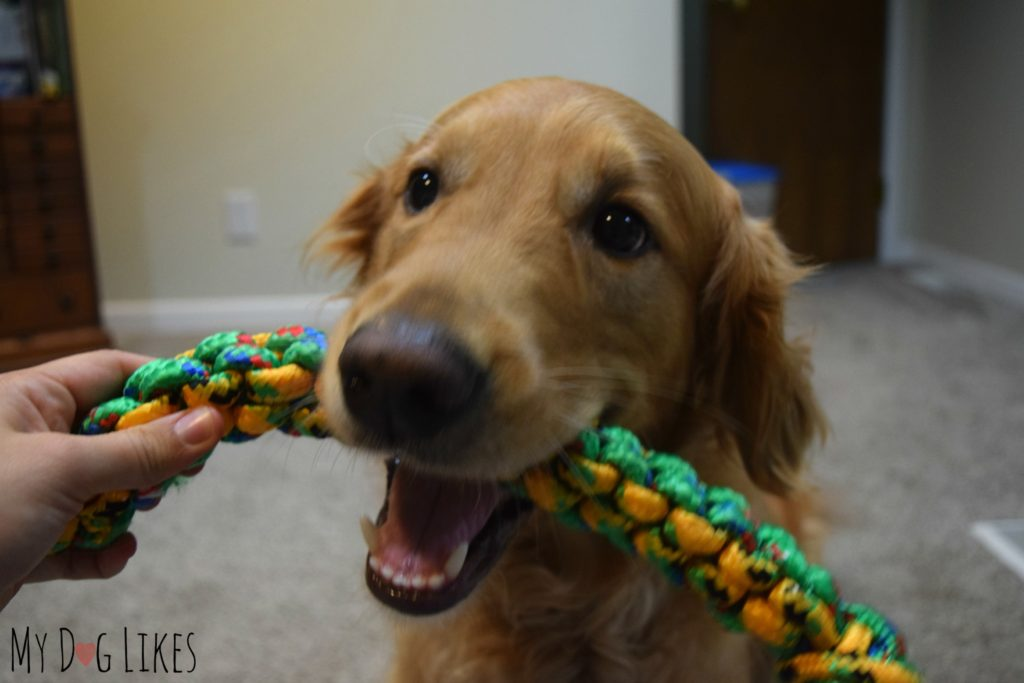 Handing the toy to Charlie