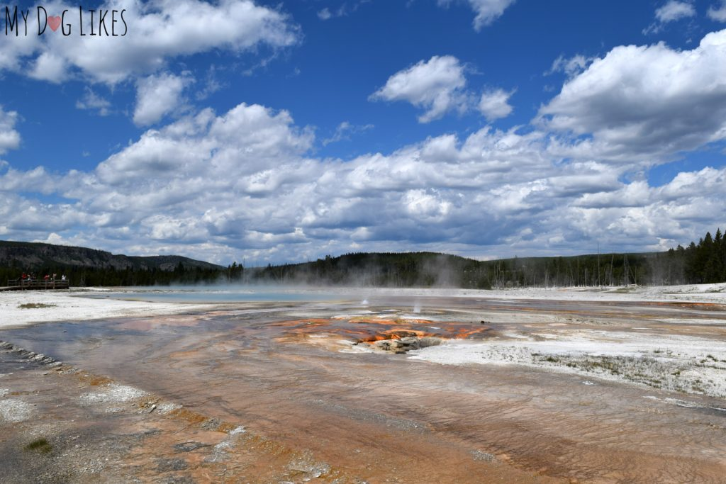 Watching steam rise from the Earth in one of Yellowstone's most geo-thermally active areas