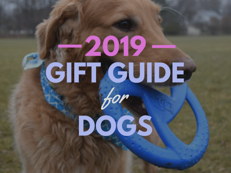 Best Gifts for Dogs 2019