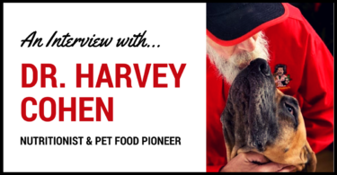 MyDogLikes interviews Dr. Harvey Cohen - Pet Food Pioneer