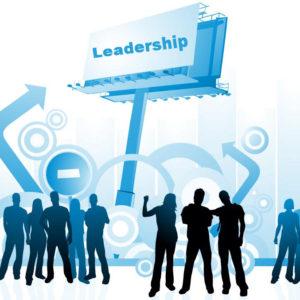 Leadership & Teams