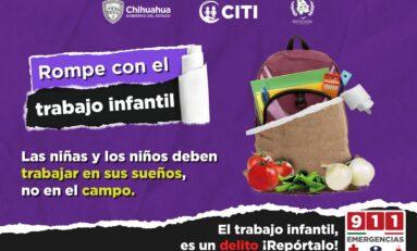 Mantiene STPS programa permanente de vigilancia en el combate al trabajo infantil
