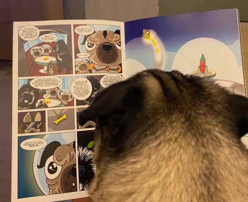 A pug reading a comic book, Pugs in Space.