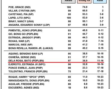 Poe, Villar, Cayetano, Lapid, Binay and Angara Leads the Latest Senatorial Survey