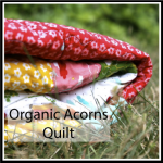 organic acorns quilt button