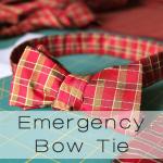 emergency tie button