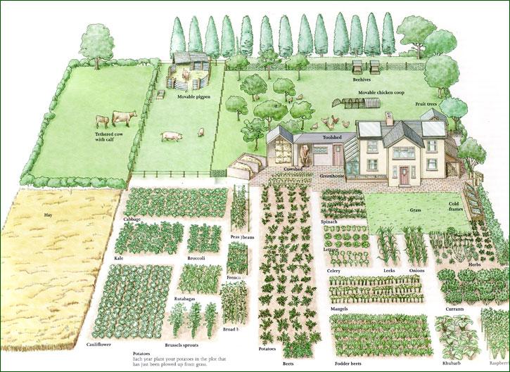 vegetable-garden-planner-design-your-best-ever-our-146244