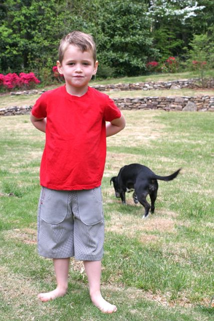boy in shorts hiding bunny