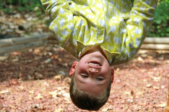 upside down flannel shirt fanfare