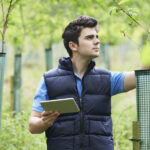 arborist consultant With Digital Tablet Checking Young Trees
