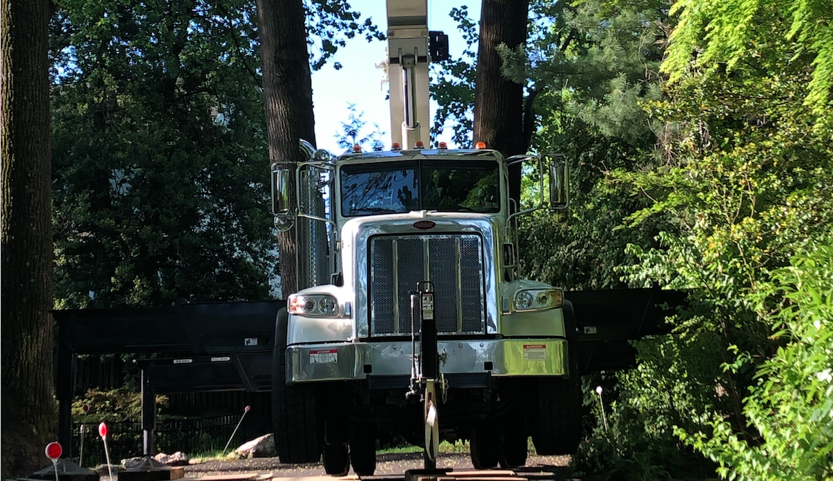 Crane truck used for tree removal emergency services