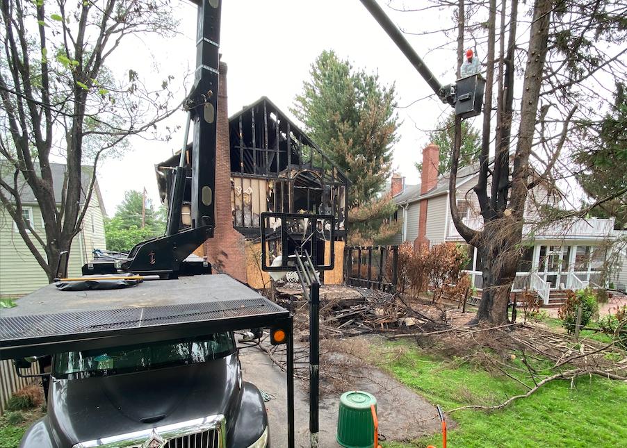 removing burned trees using cranes