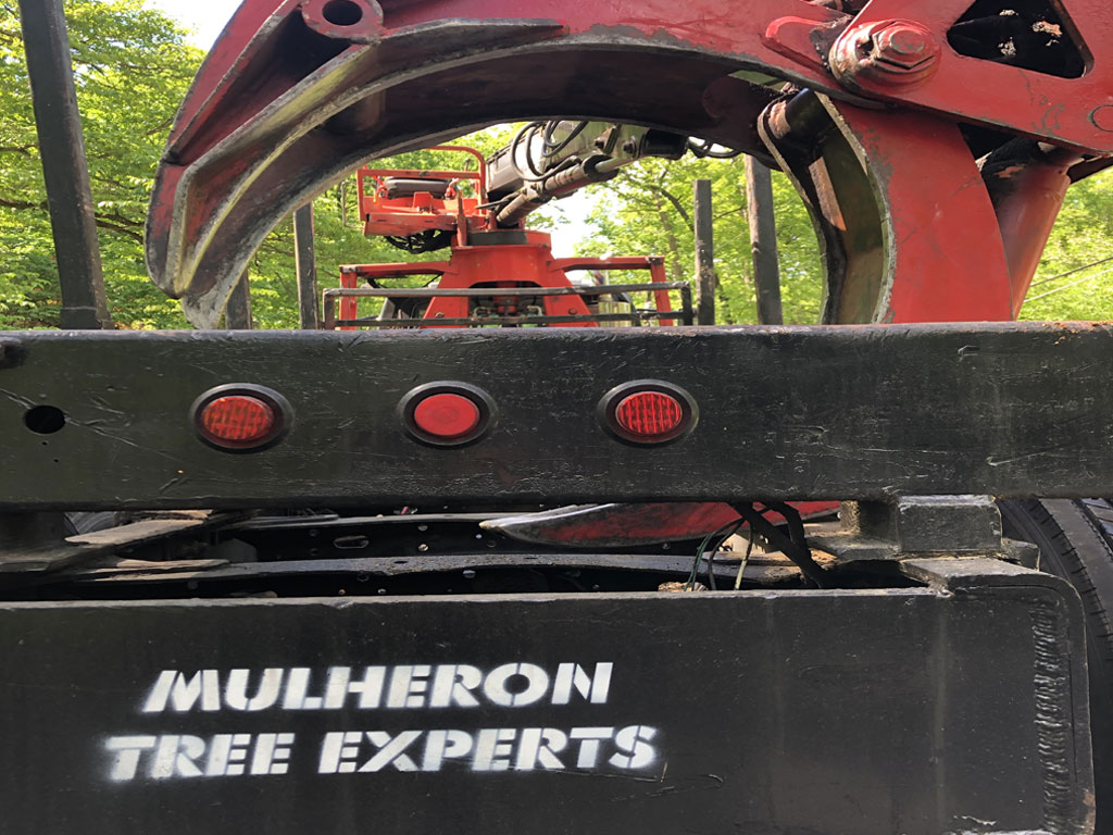 Truck Equipment for Tree-Emergency-Services