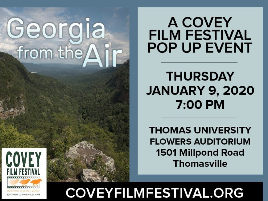 Georgia From the Air
