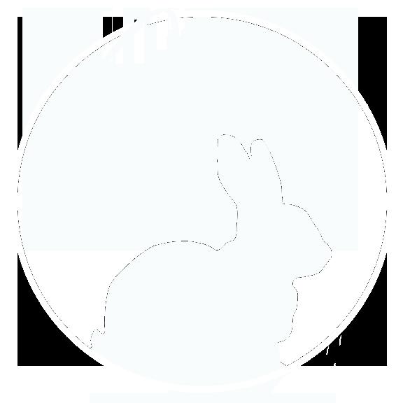 Rabbit Hole Studios
