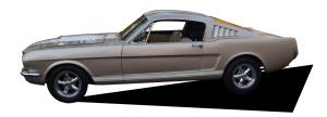 1966 Fastback champagne Racer