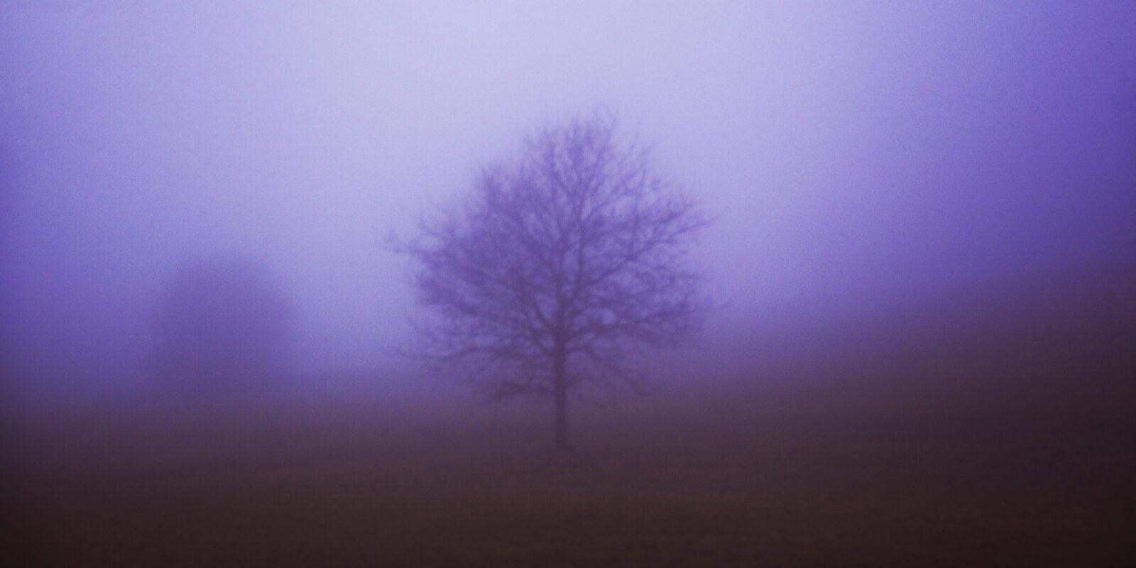 Song for the Mist-born - McGowan