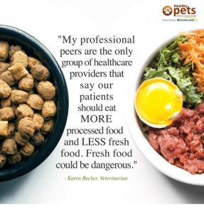 Dr Becker fresh food