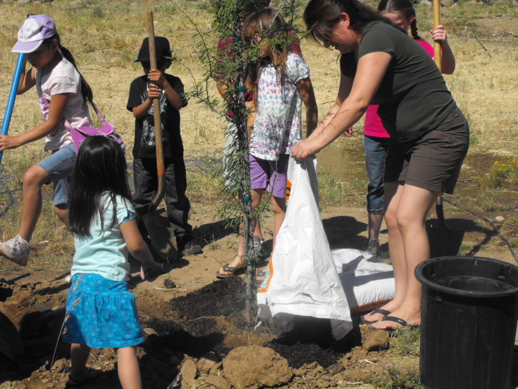 Youth planting tree