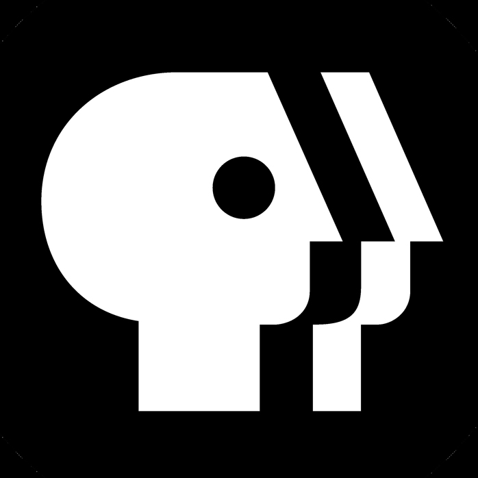 Laurence Kotlikoff's Public Broadcasting Service Blog