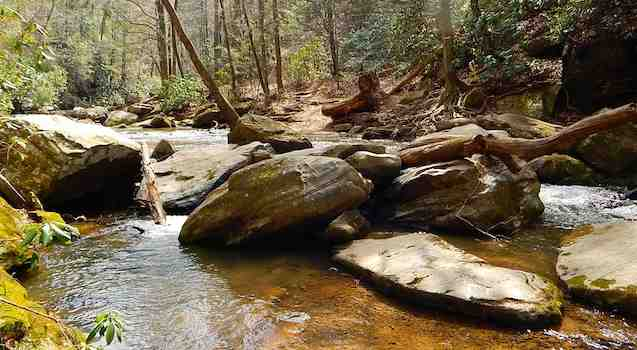 Cove Creek Saluda NC