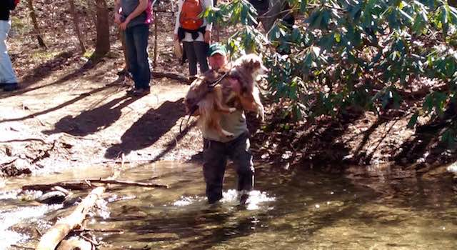 Catawba Falls Water Crossing with Gunner