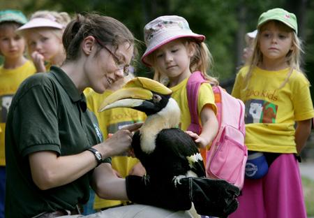 Toronto Zoo Camp