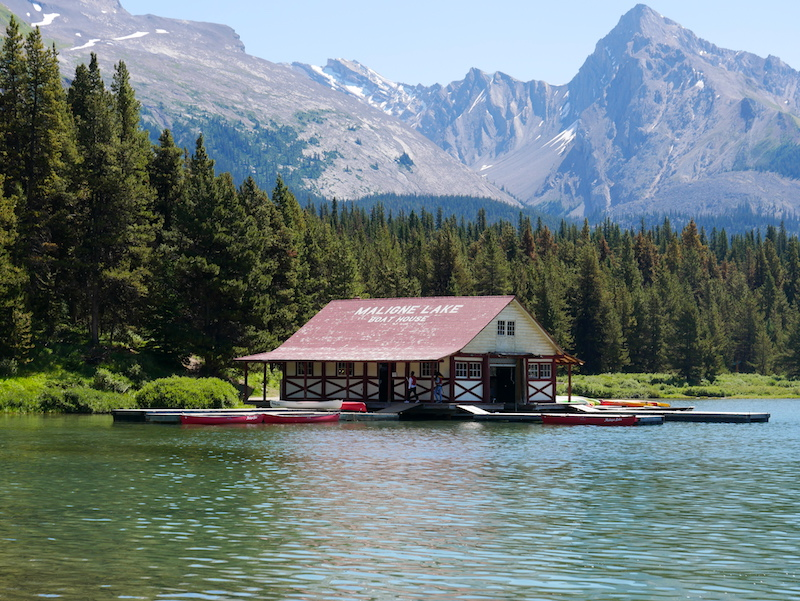 Find out why the Maligne Lake Cruise from Pursuit Collection is one of the best activities for families in Jasper.