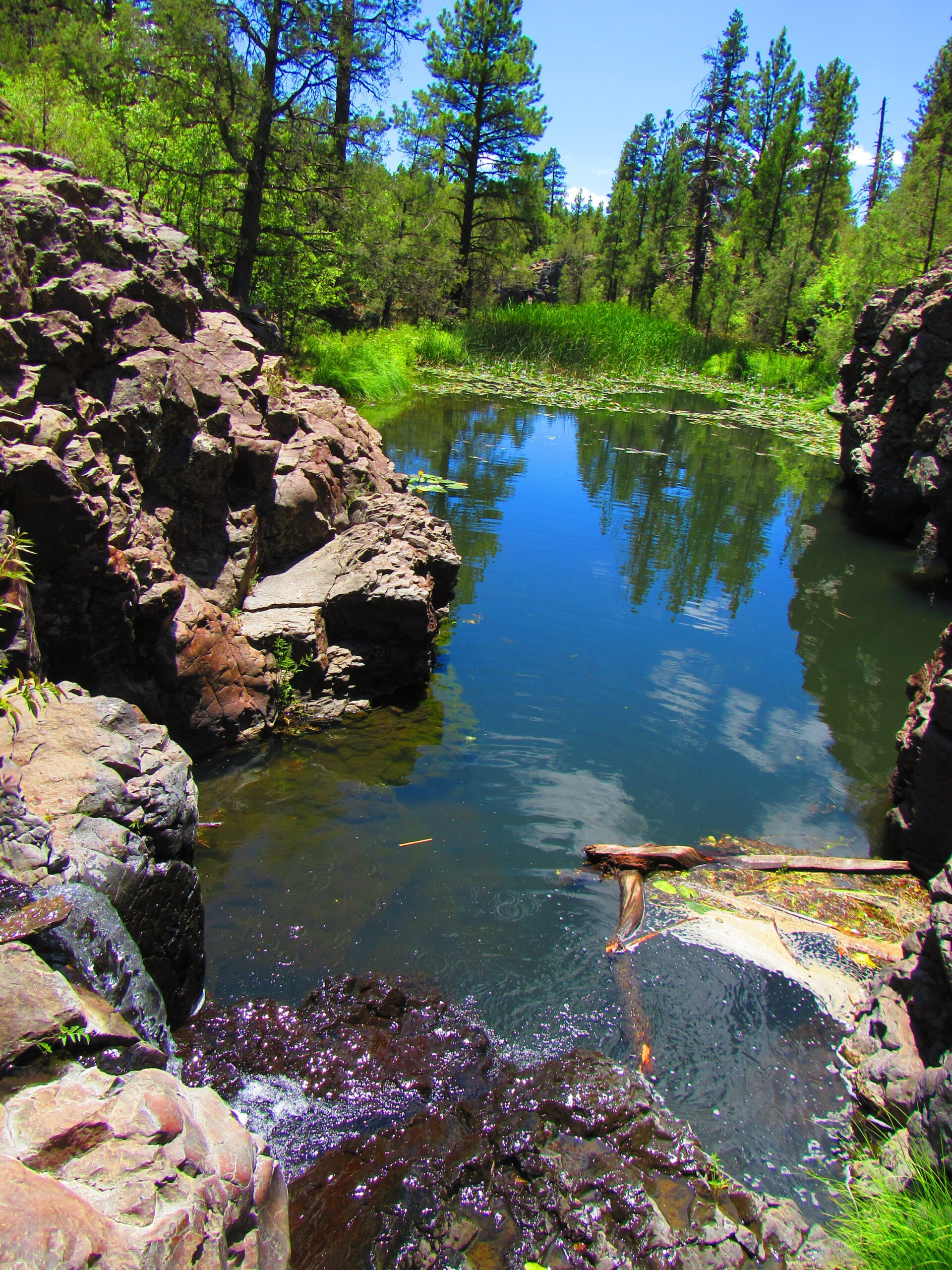 sycamore canyon with water
