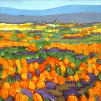 """Mexican Poppies"""