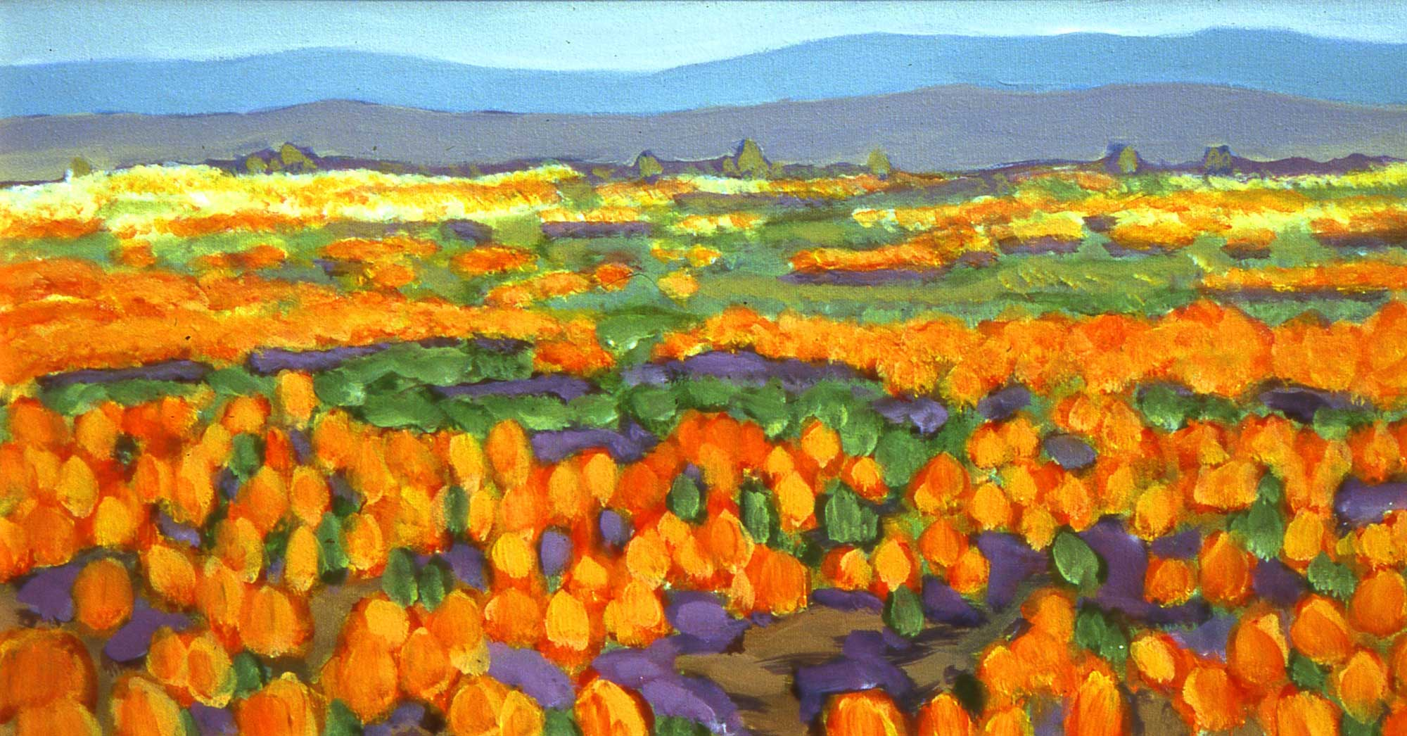 2003-Mexican-poppies