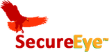SecureEye Systems | New York City | IT Services