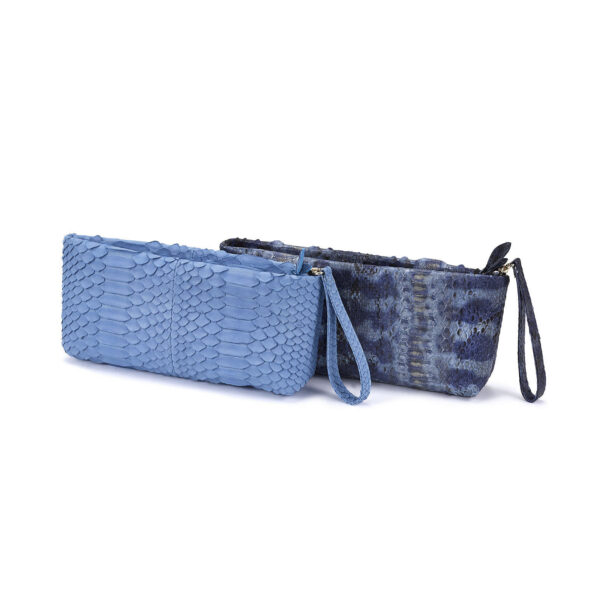 Blue-Python-MiniCluthes