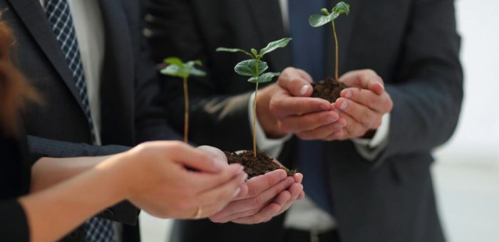 Sustainability Reporting: Is it just for the big boys?