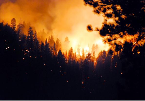 Wildfire Season is Here