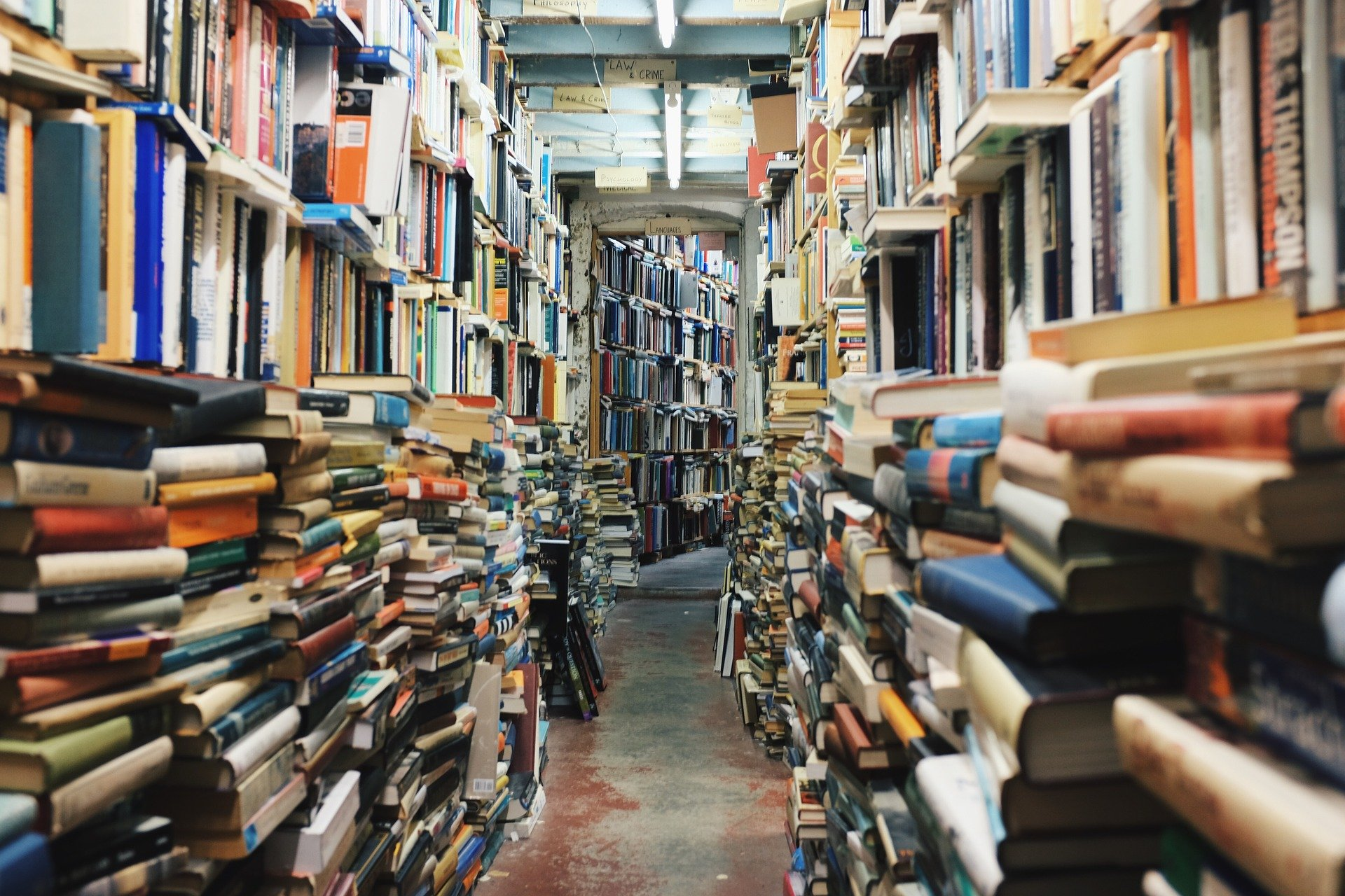 DIVE! into a sea of books