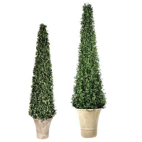 Faux Cone Shaped boxwood topiary