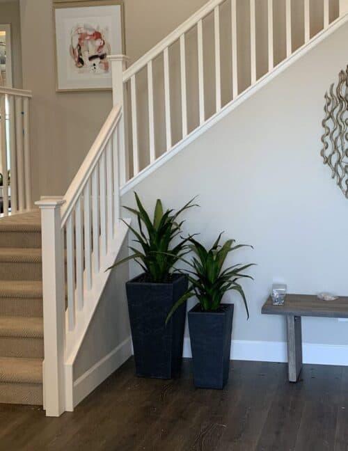 Faux Agave Plant