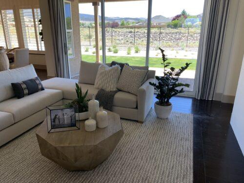 Model Home plants