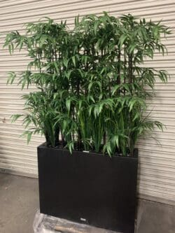 Using Artificial Plants and Planters for Social Distancing
