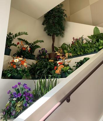 Live Plant to Silk Plant conversion