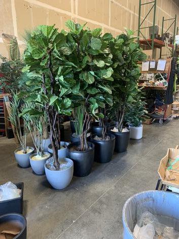 Custom Floral and plantscapes design for interior designers